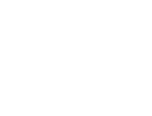 The Quality Gate